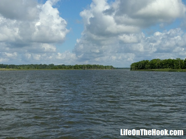 Heading Up The Apalachicola River